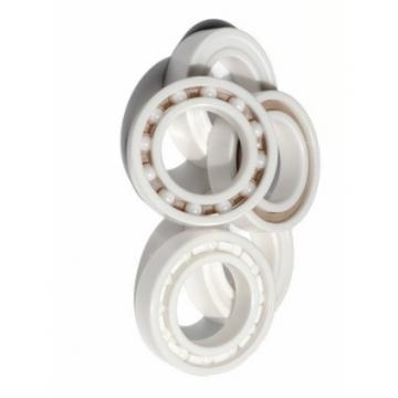Bearing Manufacture Distributor SKF Koyo Timken NSK NTN Taper Roller Bearing 32020 32021 32022 32024 32026 32028 32030 32032 32034 32036 32038