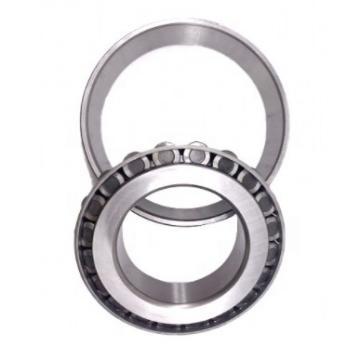 Chik Waterproof Roller Bearings 32010 32026 32206 32220 32304 Cross Roller Bearing
